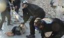 Алекс Джонс: химическая атака в Хан-Шейхуне – очередная провокация против Асада
